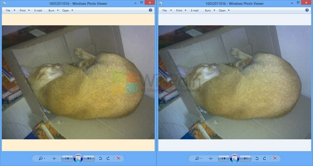 Cara Mengatasi Background Kuning di Windows Photo Viewer