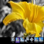 Download Aplikasi Fhotoroom untuk Windows 8