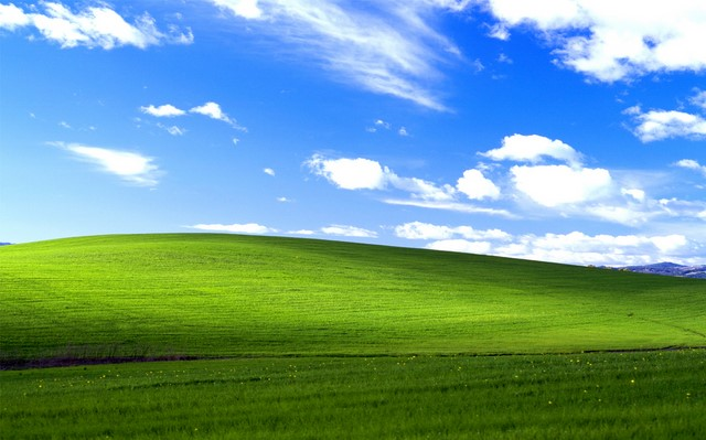 Jumlah Pengguna Windows XP Meningkat, Fenomena Apakah Ini?