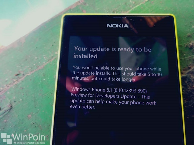 Ada Update untuk Windows Phone 8.1 Preivew For Developer