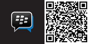 Download BBM untuk Windows Phone