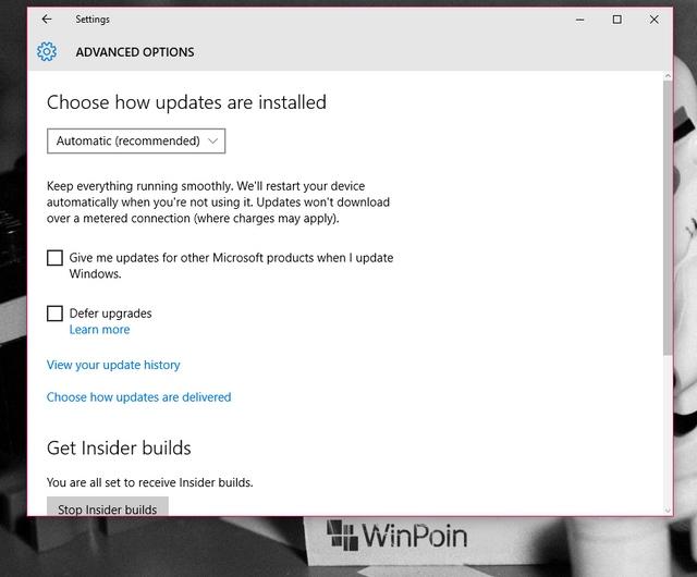 Fitur Automatic Update Tidak Bisa Dimatikan di Windows 10 Home — Tetapi Bisa di Versi Pro