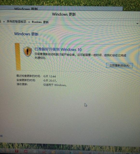 Beberapa Pengguna Sudah Mulai Bisa Melakukan Upgrade ke Windows 10