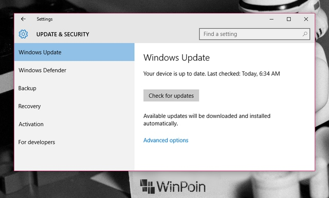 Cek Windows Update Kamu, Ada Bugs Fix dan Update Security Minor di Windows 10
