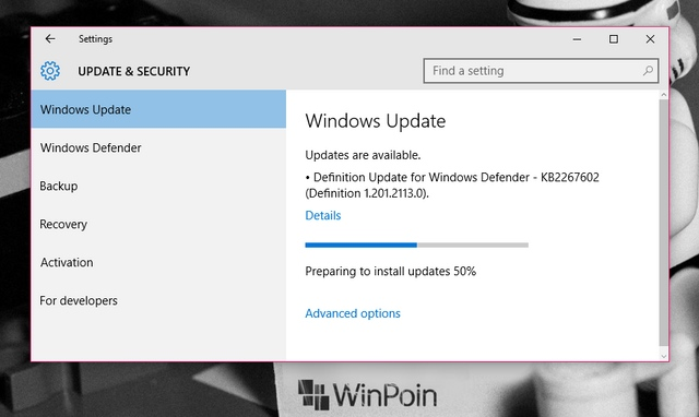 Cek Windows Update Kamu, Ada Bugs Fix dan Update Security Minor di Windows 10