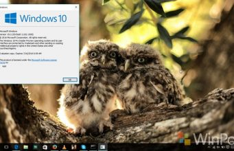 windows10build11102_1
