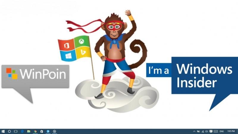 Ninja Monkey-Winpoin
