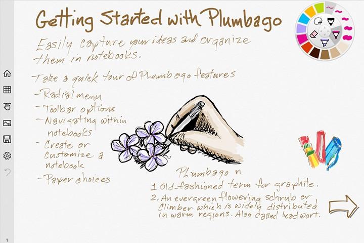 Plumbago_01