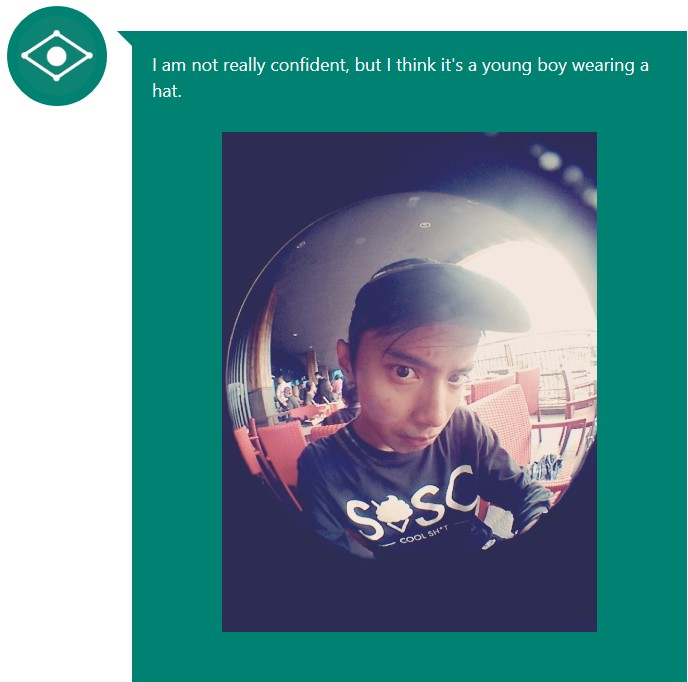 CaptionBot_3