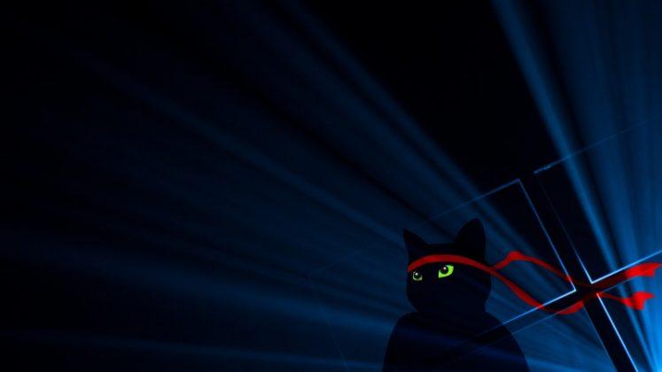 Peringati 1 Tahun Windows 10 dengan Wallpaper Ninja Cat Terbaru