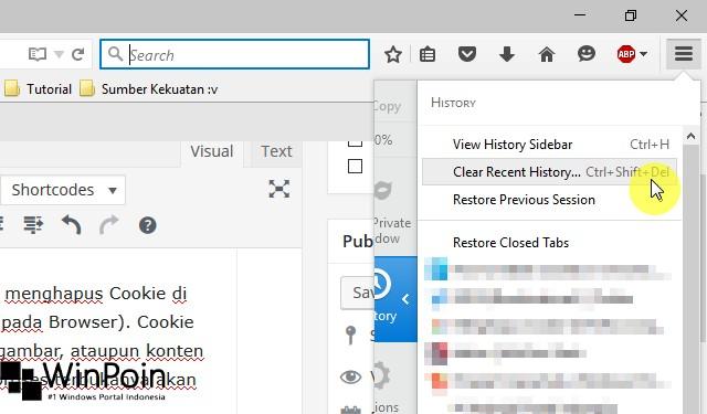 Cara Menghapus Cookie di Mozilla Firefox (3)