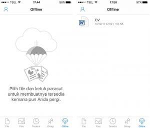 Offline File
