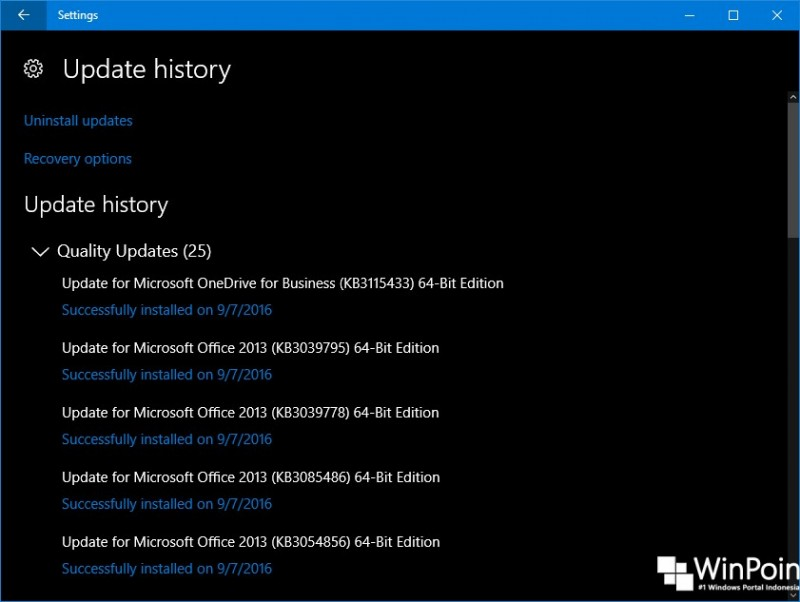 windows-10-build-14915-terdapat-kategori-update-pada-settings