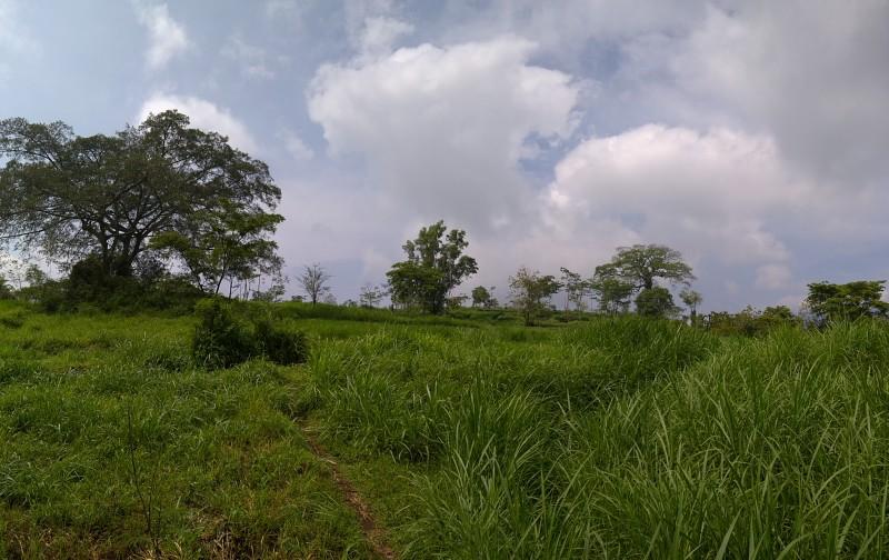 wp_20161106_09_08_28_panorama