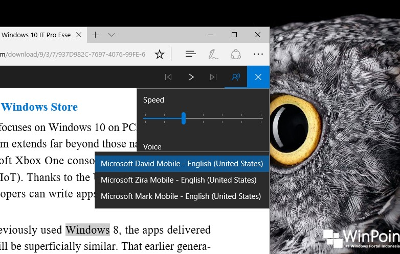 Windows 10 Build 15019 Peningkatan pada Microsoft Edge (5)