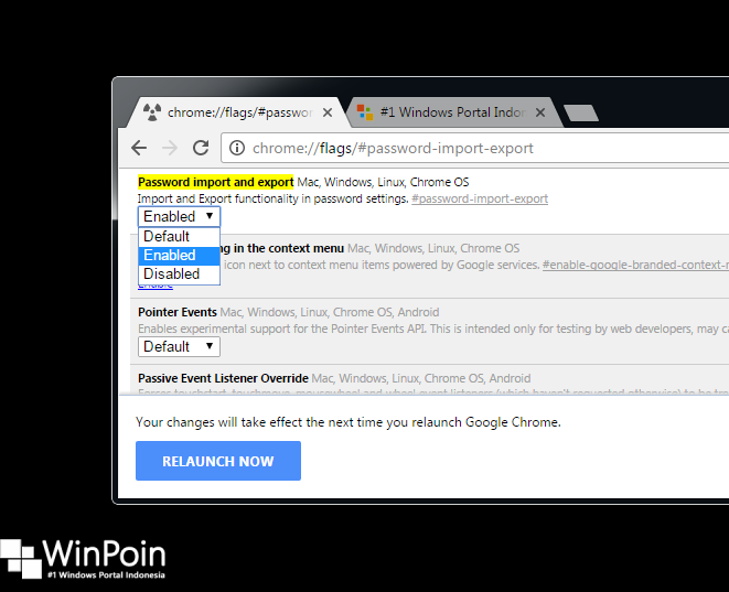 Cara Export Password Google Chrome (2)