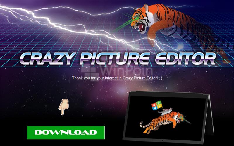 Lengkapi Koleksi Ninja Cat Kamu dengan Ninja Cat Versi Tiger