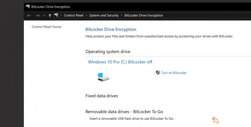 BitLocker Dapat Menggunakan Enkripsi Perangkat Lunak secara Default di Windows 10 Versi 19H1