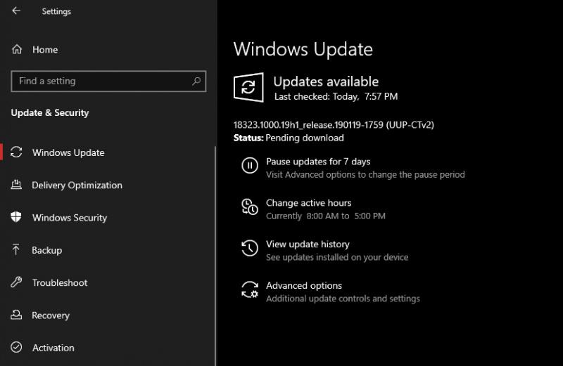 Skip Ahead Ring untuk Windows 10 19H2 Telah Dibuka