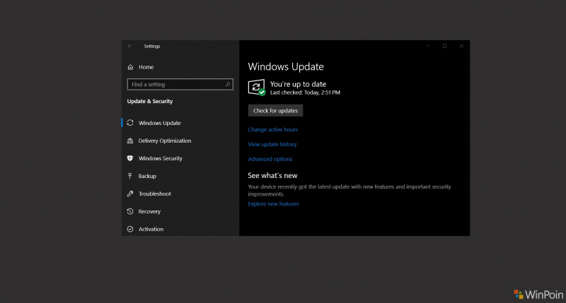 Beberapa Versi Windows 10 Mendapatkan Update Kumulatif Januari 2019