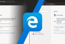 Microsoft Edge Chromium Based 75.0.111.0, Sekarang Tersedia Untuk Didownload!
