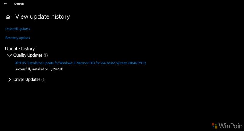 Pengguna Keluhkan Update KB4497935 Ditawarkan Kembali Meski Telah Diinstal Beberapa Kali!